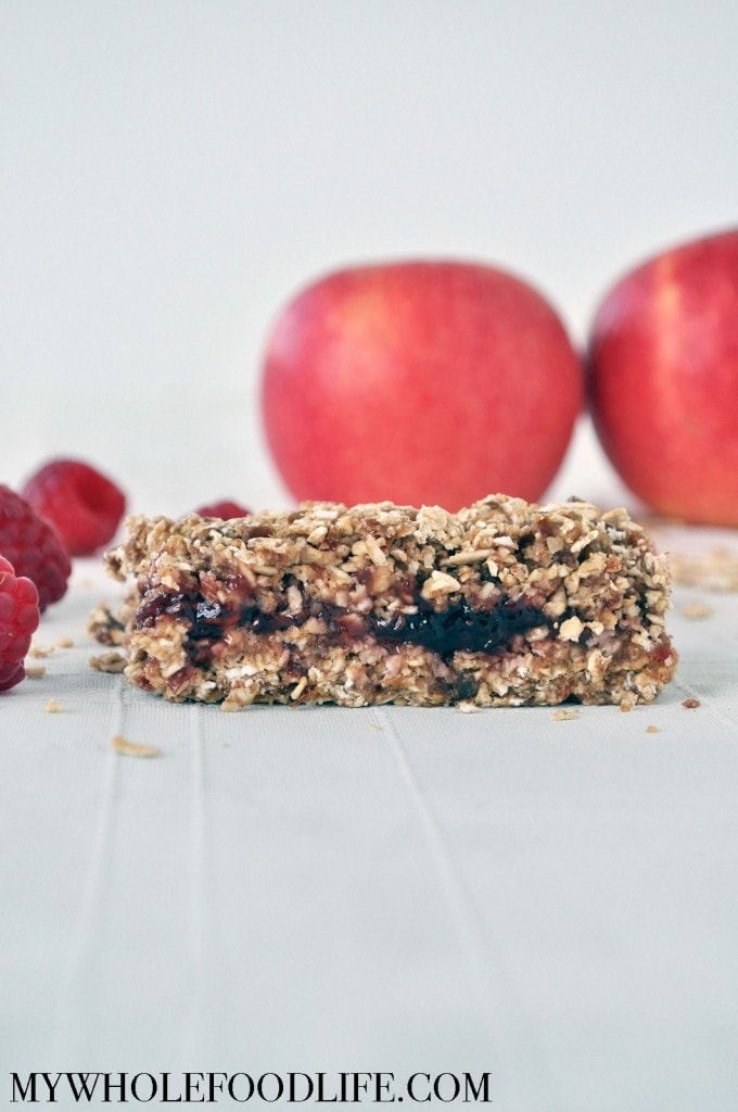 No Bake Oat Bars - My Whole Food Life