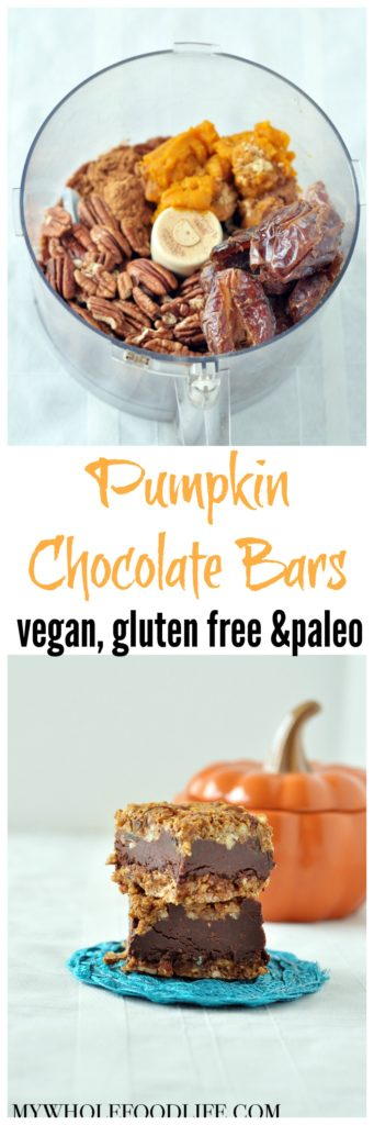 pumpkin chocolate bars