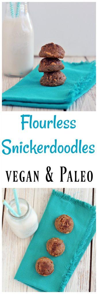 Flourless Snickerdoodles P
