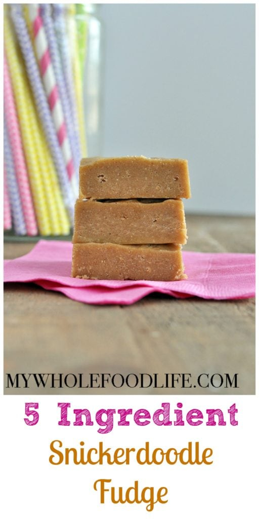 5 Ingredient Snickerdoodle Fudge